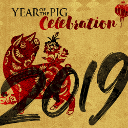 At the fabulous Tulalip Resort Casino south of Vancouver, BC near Seattle on I-5 celebrate the Lunar New Year on Tuesday, February 5, 2019 - get your tickets!