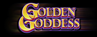 Play slots at Tulalip Resort Casino north of Bellevue and Seattle on I-5 like the super exciting Golden Goddess machine!