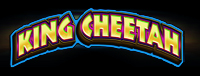 Play slots at Tulalip Resort Casino north of Bellevue and Seattle on I-5 like the super exciting King Cheetah machine!