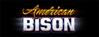 American Bison slot at Tulalip Resort Casino