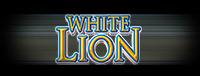 Play the White Lion slot machines at Tulalip Resort Casino—exit 200 on I-5 near Marysville, Washington