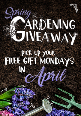 Play slots and more at Tulalip Resort Casino north of Bellevue and Seattle on I-5 Mondays in April to earn Spring Gardening Giveaway gifts and enter the $5,000 backyard makeover drawing!