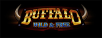 Play slots at Tulalip Resort Casino just north of Bellevue on I-5 like the super fun Buffalo Wild & Free!