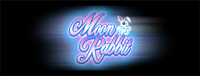 Relax and enjoy slots at Tulalip Resort Casino south of Richmond, BC near Seattle on I-5 including the electrifying Moon Rabbit!