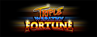 Play slots at Tulalip Resort Casino north of Bellevue near Everett, WA on I-5 like the super fun Triple Wealthy Fortune!