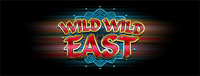 At the fabulous Tulalip Resort Casino south of Richmond, BC near Seattle on I-5 you can play the exciting Wild Wild East slot machine!