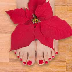 Seasonal Pedicure T Spa service image