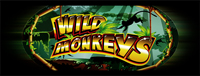 Play slots at Tulalip Resort Casino south of North Vancouver, BC near Seattle on I-5 like the exciting Wild Monkeys video gaming machine!